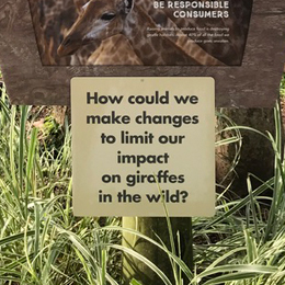 A sign on a giraffe exhibit reads: How could we make changes to limit our impact on giraffes in the wild?